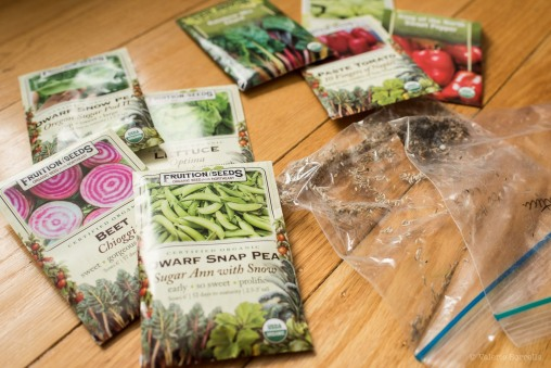 Purchased and saved seeds